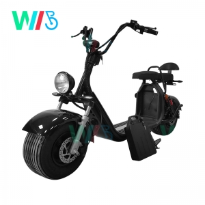 HR2-1  High End Harley Citycoco1500W / 2000W EEC Electric Motorcycle Scooter