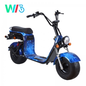 WKCE1-1 EEC Latest Popular 1500W / 2000W Off Road E City Electric Scooter Sport Electric Motorcycle